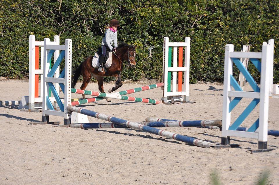 Aurelia Riding Club S S D Arl Scuola di equitazione